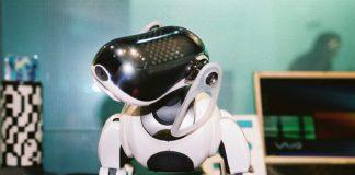 AIBO-robotski-pas-Sony